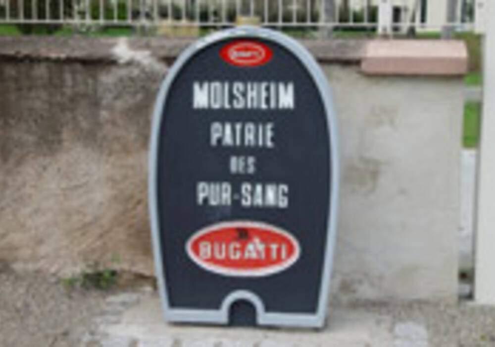 Photo-reportage - Molsheim, Patrie des pur-sang