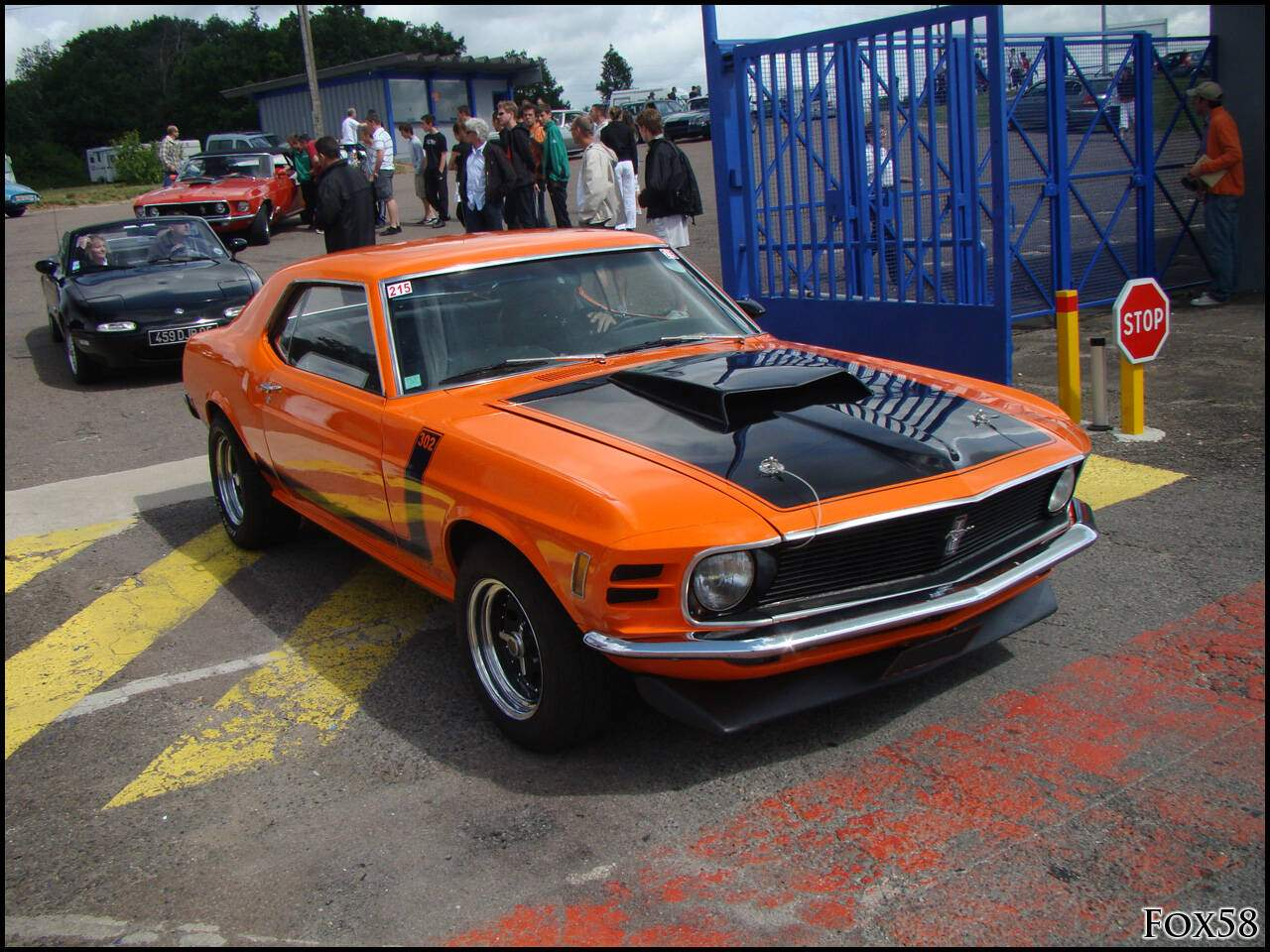 fiche technique ford mustang boss 302 1969 1970. Black Bedroom Furniture Sets. Home Design Ideas